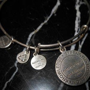 Alex and Ani Jewelry - Alex And Ani Knowledge Strength Motivation Charm S